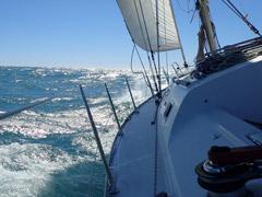 Attività a vela a Ostia