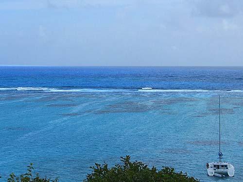 21-caraibi-in-barca-vela-reef