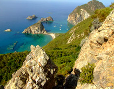 Cala Francese (cala del Porto) - Palmarola - Magnifica veduta dall'alto