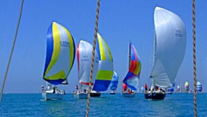 spinnaker in regata